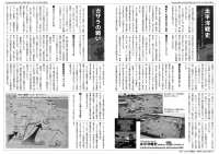 SN009_02.jpg